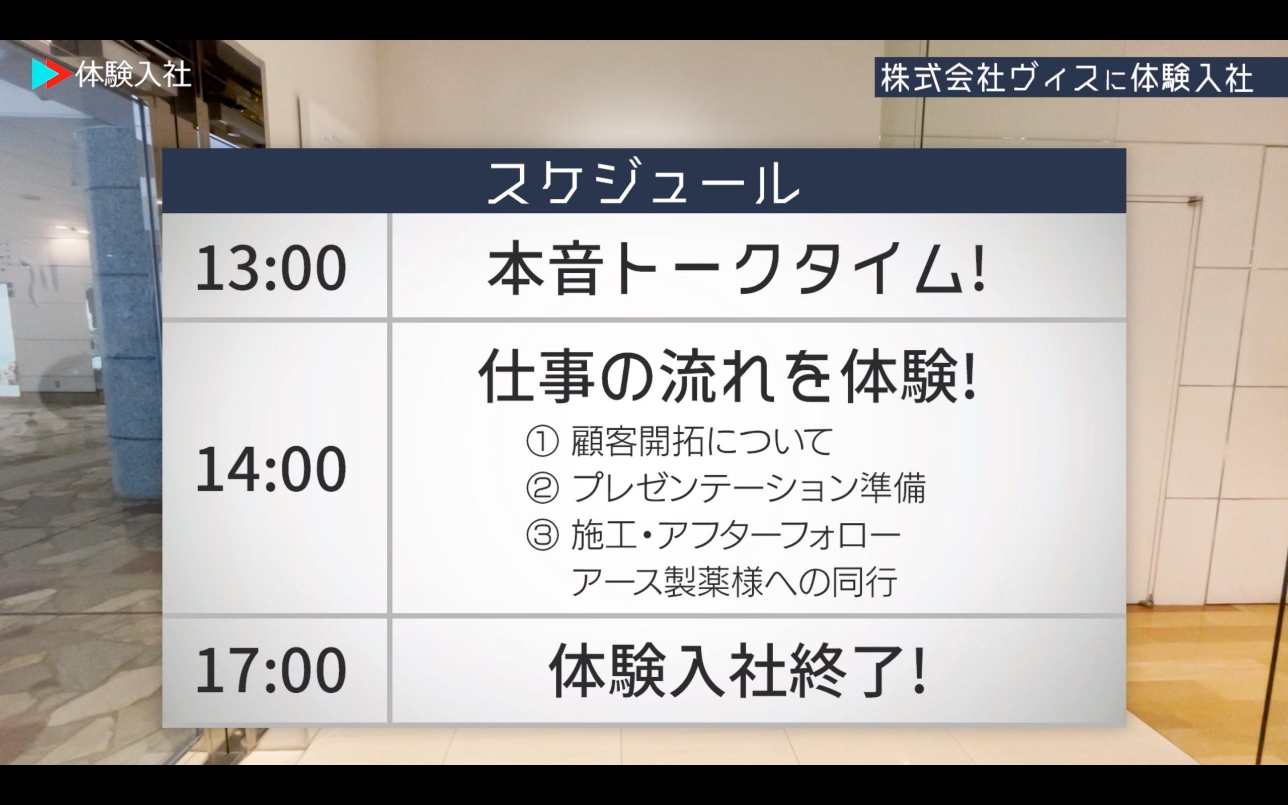 株式会社ヴィス体験入社スケジュール